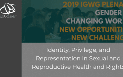 Identity, Privilege, and Representation in Sexual and Reproductive Health and Rights:  Reflections from the 2019 Interagency Gender Working Group Meeting
