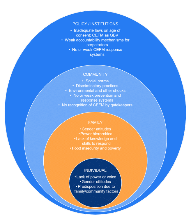 Image of the socio-ecological model with four nested circles for each risk factor. From inside to outside: individual (power/voice, gender attitudes, predisposition), family (attitudes, power hierarchies, knowledge/skills, food insecurity/poverty), community (social norms, practices, shocks, prevention/response systems), and policy/institutions (laws, accountability, response systems)