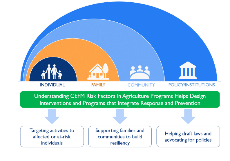 "Practical reorientation of the socio-ecological model for CEFM, with the same nested circles (right to left: individual, family, community, policy/institutions). Below the model, text reads, ""Understanding CEFM Risk Factors in Agriculture Programs Helps Design Interventions and Programs that Integrate Response and Prevention,"" above three boxes: Targeting activities to affected or at-risk individuals, supporting families and communities to build resiliency, and helping draft laws and advocating for policies"